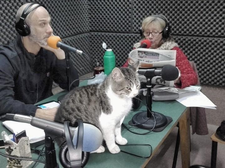 Radio Asamblea 3